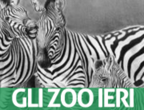 ZOOS OF THE PAST